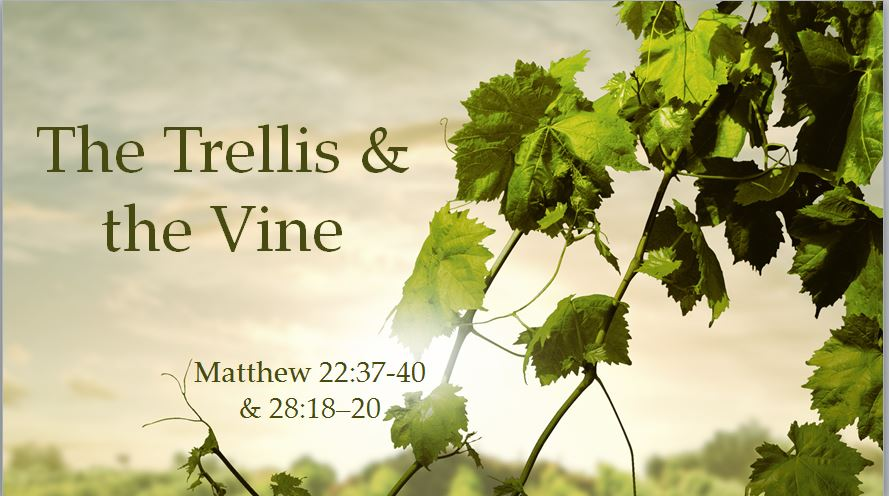 The Trellis & the Vine – The Motive, Mandate & Methods for the Mission (8/6/17)