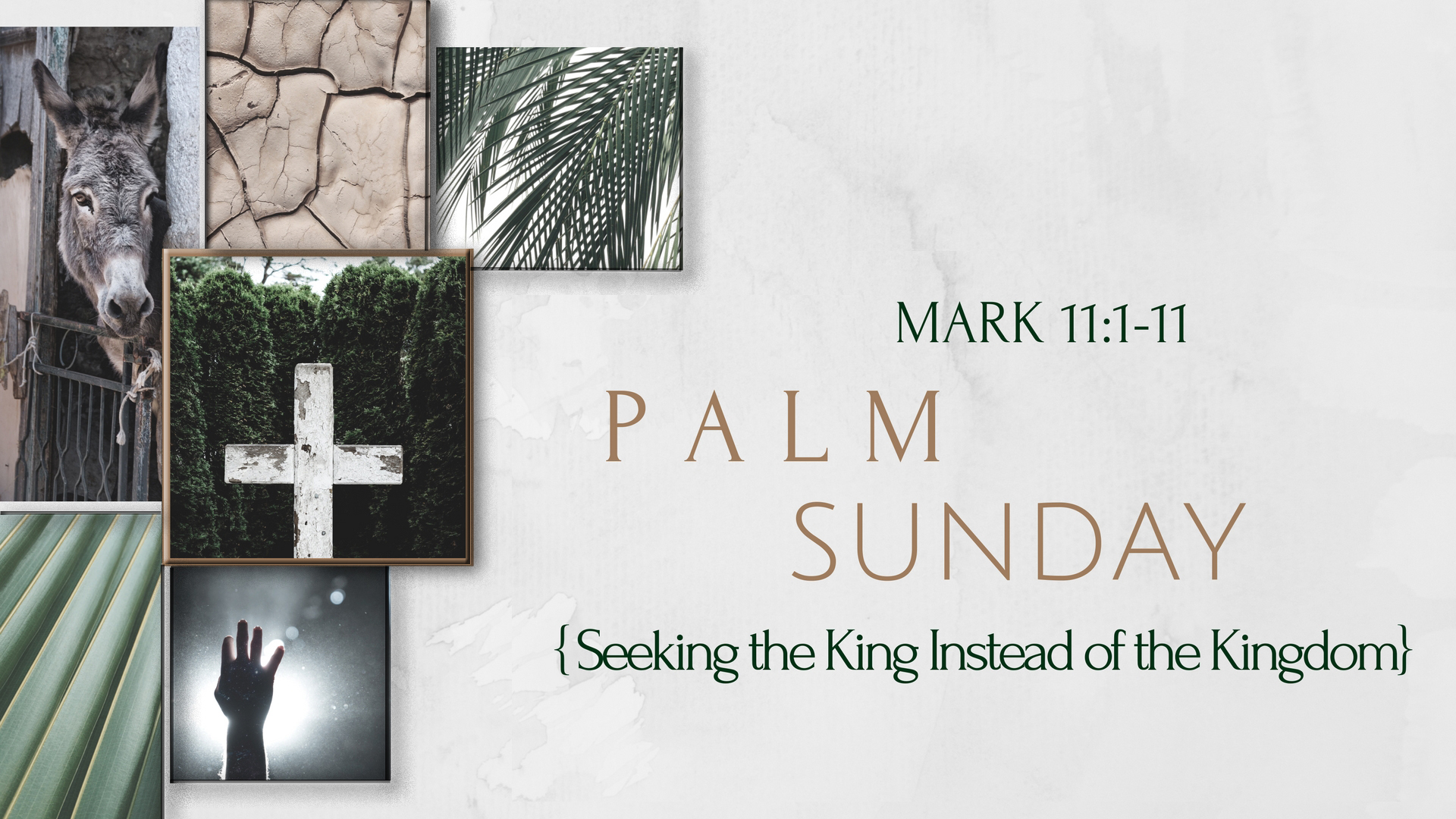Seeking the King Instead of the Kingdom (3/25/18)