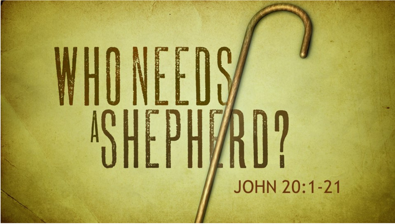 Who needs a Shepherd?